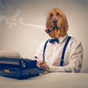 Email Marketing: The B2B Marketer's Loyal Hound