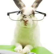 B2B Buyers Research Like Rabbits. Is Your Content Keeping Pace?