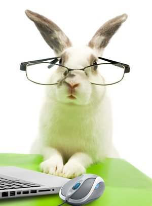 B2B Buyers Research like Rabbits.Can You Keep Pace