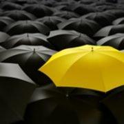 testimonials umbrella