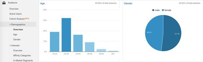 Google Analytics Audience > Demographics Report
