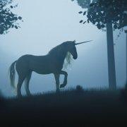 B2B Marketing Unicorns are REAL!